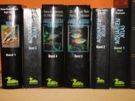 Foto 12 94469 - 300l Aquarium mit Top Ausstattung