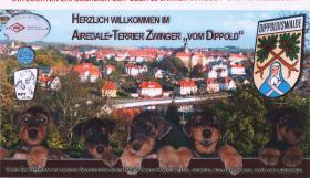 Foto 7 AIREDALE-TERRIER, Zwinger und Welpen