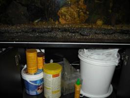 Foto 3 !!!!ALLES!!!! 100 Liter Aquarium, Unterschrank, Fisch,
