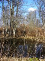 Foto 8 Ackerland in Lettland