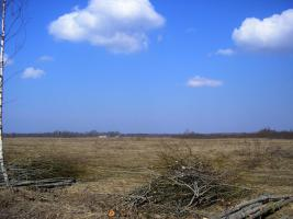 Foto 9 Ackerland in Lettland
