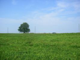 Foto 4 Ackerland in Lettland