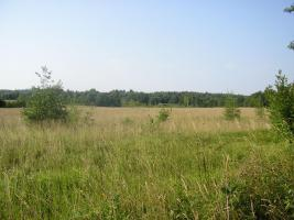 Foto 2 Ackerland in Lettland