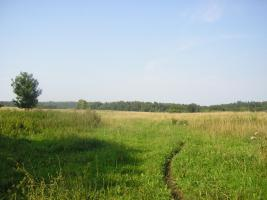 Foto 6 Ackerland in Lettland