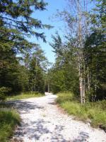 Ackerland + Wald zu verkaufen in Tschechien