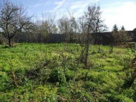 Foto 3 Älteres Haus mit Garten am Balaton in Ungarn zu verkaufen! Preis: VB.