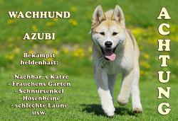 Foto 5 Akita Inu Warnschild Metall-Warnschild