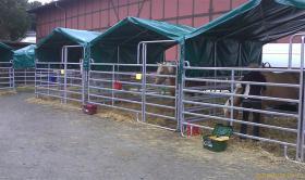 Foto 2 Alles für die Tierhaltung im Stall und auf der Weide