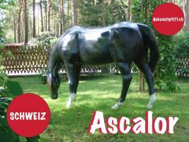 Foto 6 Altdorf - Deko Kuh lebensgross / Liesel von der Alm oder Edelweiss von der Alm oder Deko Pferd lebensgross ...