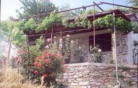 Altes Steinhaus auf dem schönen Pilion / Griechenland