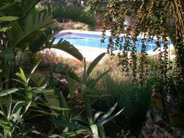 Foto 5 Apartment & Pool in Alhaurin el Grande Malaga Spanien nähe Lauro Golf Platz von privat zu vermieten