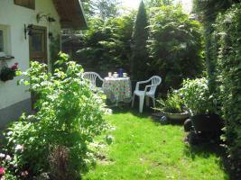 Garten 02[2]