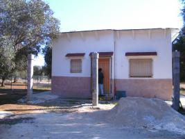 Apulien, Puglia, San Pietro in Bevagna Privatverkauf wunderschöner Olivenhain mit kl.Haus zum Fertigrenovieren