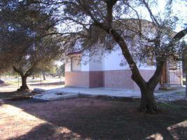 Foto 2 Apulien, Puglia, San Pietro in Bevagna Privatverkauf wunderschöner Olivenhain mit kl.Haus zum Fertigrenovieren