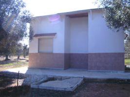 Foto 4 Apulien, Puglia, San Pietro in Bevagna Privatverkauf wunderschöner Olivenhain mit kl.Haus zum Fertigrenovieren