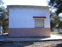 Foto 10 Apulien, Puglia, San Pietro in Bevagna Privatverkauf wunderschöner Olivenhain mit kl.Haus zum Fertigrenovieren