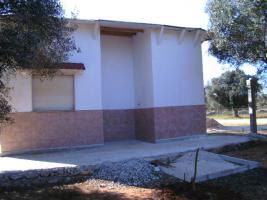Foto 12 Apulien, Puglia, San Pietro in Bevagna Privatverkauf wunderschöner Olivenhain mit kl.Haus zum Fertigrenovieren
