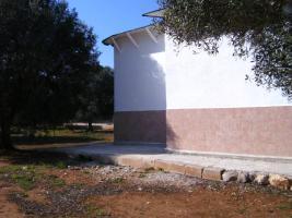 Foto 15 Apulien, Puglia, San Pietro in Bevagna Privatverkauf wunderschöner Olivenhain mit kl.Haus zum Fertigrenovieren