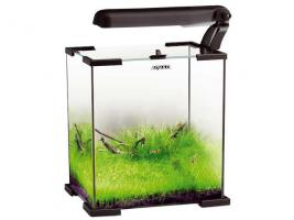 AquaEL Shrimp Set Garnelenbecken 30 L