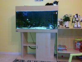 Aquarien - Eheim mit fisch jbl pumpe 500 liter komplette mit allem zubehör