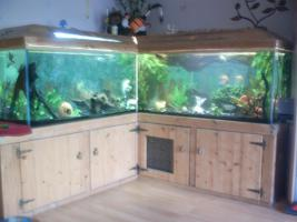 Aquarium 1000Liter plus zubeh�r