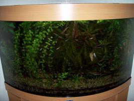 Foto 3 Aquarium 190 Liter