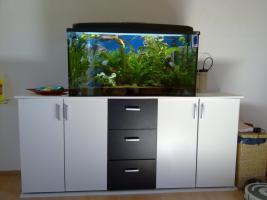 Aquarium 200L m.Unterschrank & Fischen