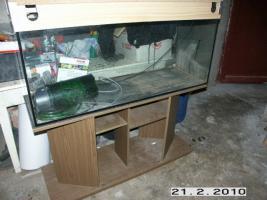 Aquarium 250l mit Unterschrank