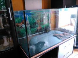 Aquarium 250l mit Zubehör zu verkaufen!!