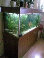 Foto 2 Aquarium 450l.