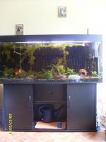Aquarium 600l Gesamtvolumen