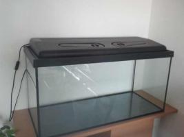Foto 2 Aquarium 80x35x40 mit Unterschrank + Zubehör