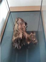 Foto 4 Aquarium 80x35x40 mit Unterschrank + Zubehör