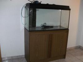 Aquarium 90L
