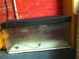 Foto 3 Aquarium mit Abdeckung abzugeben