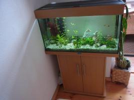 Aquarium Juwel 120 L komplett mit Unterschrank
