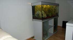 Foto 2 Aquarium mit Schrank Farbe Silber Grau mit oder Ohne Besatz