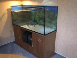 Aquarium mit Unterschrank