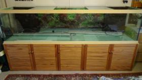 Aquarium mit Unterschrank 1000 Liter