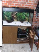 Foto 2 Aquarium mit Unterschrank und viel Zubehör