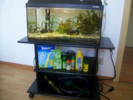Aquarium mit allem drum und dran