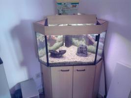 Aquarium ca. 220 Litter