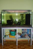 Foto 4 Aquarium kommplett