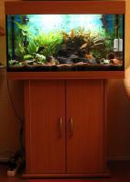 Aquarium komplett 125l