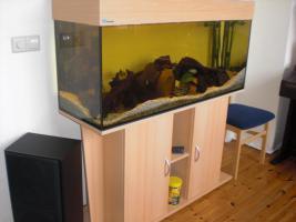 Aquarium komplett mit Unterschrank und eheim-Filter