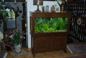 Foto 2 Aquarium komplett mit Zubehör :