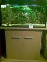 Aquarium zu verkaufen!