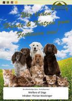 Artgerechtes Hundefutter in Lebensmittelqualität