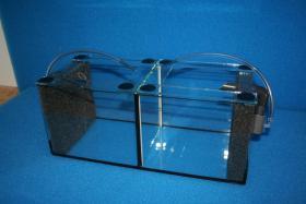 Aufzuchtkasten aus Glas