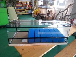 Foto 2 Aufzuchtsbecken für Dendrobaten NEU beim Vivarienhaus